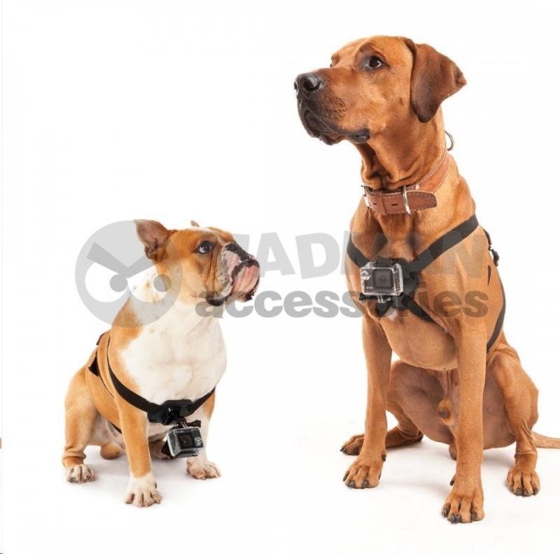 MadMan Postroj na psa pro GoPro